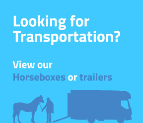 Looking for transportation? View our horseboxes and trailers.